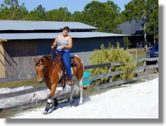 Pferderanch im Lee County Florida