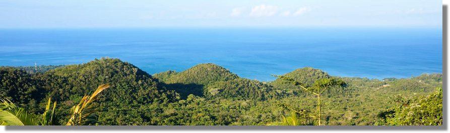 Jamaika Haus Kaufen